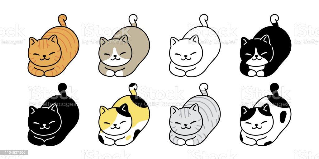 cat vector kitten calico icon logo symbol breed cartoon character...