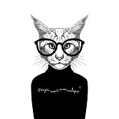 cat wearing glasses and a sweater