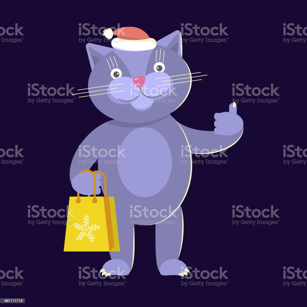 2019 year for lady- Cartoon what cat wears a purple hat