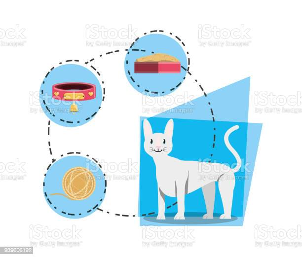 Cat wirh can food vector id939606192?b=1&k=6&m=939606192&s=612x612&h= vjosgaz0q4fmgpc zwgnsywrtklamefygbkksyvb g=