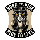 Cat with crossed paws dressed in the helmet and glasses. Vector hand drawn color vintage engraving. For poster and t-shirt biker club. BORN TO RIDE lettering.