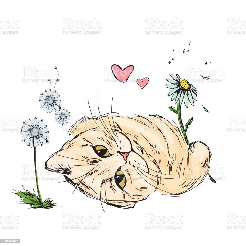 Dessin Avec La Main chat avec des fleurs dessin À main vecteurs libres de droits