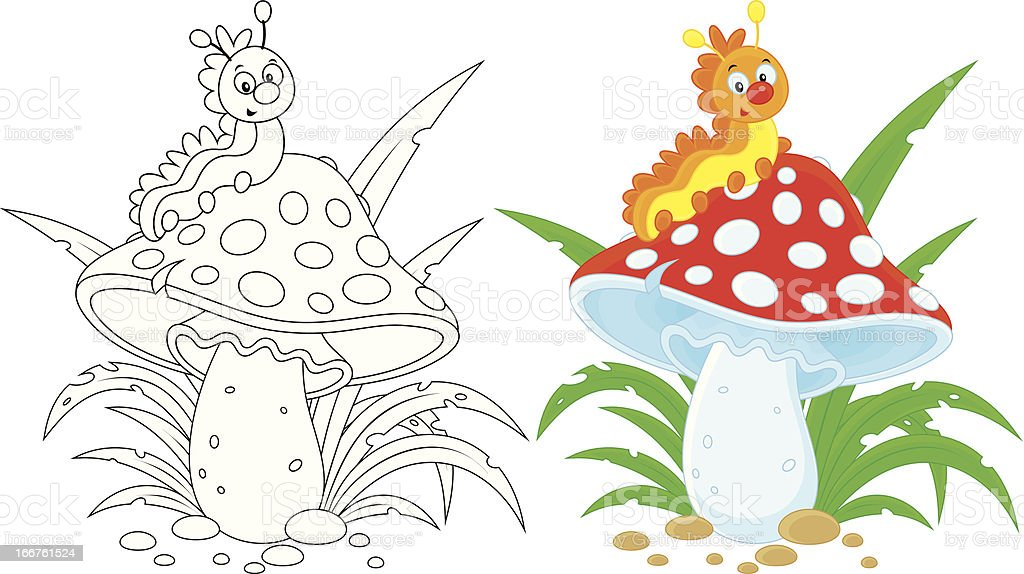 Caterpillar and fly agaric vector art illustration