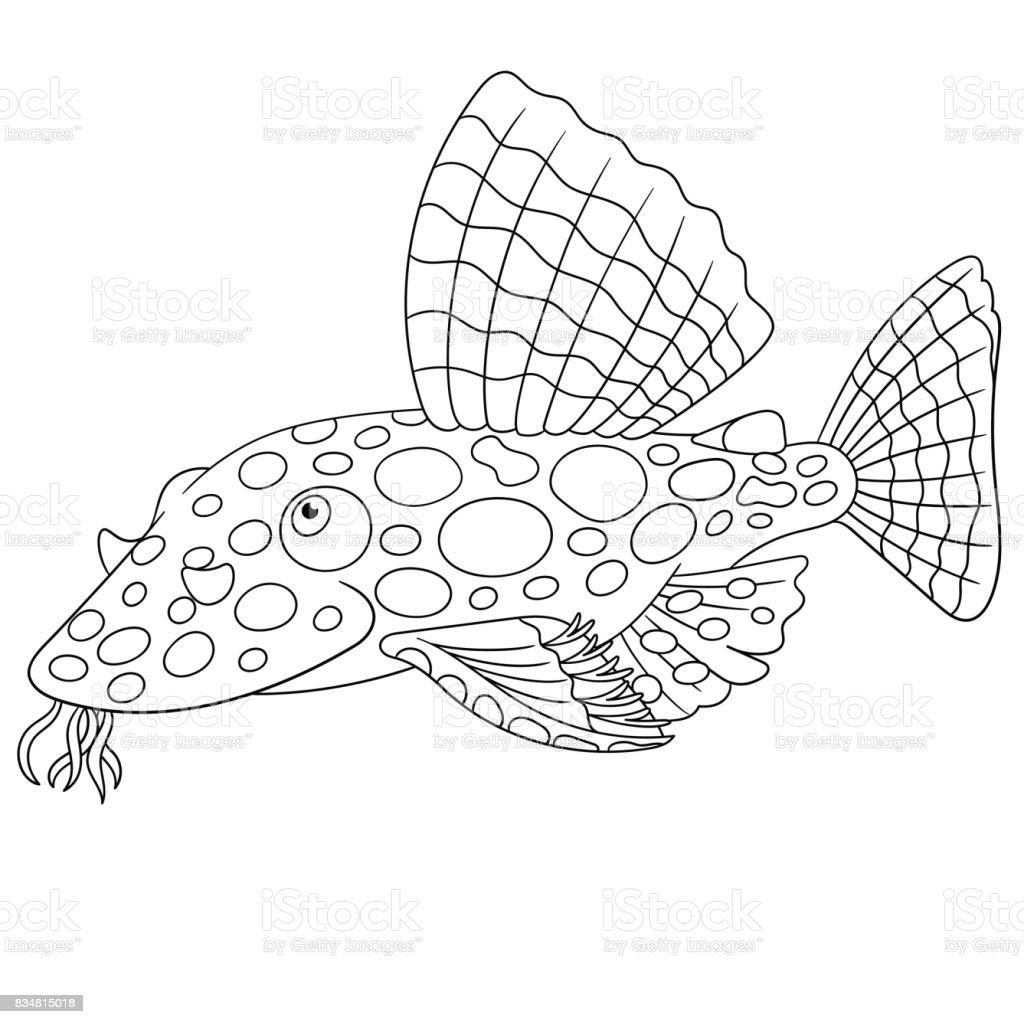 Yayın Balığı Balık Boyama Stok Vektör Sanatı Akuatik Organizmanin