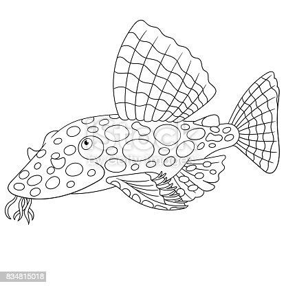 ᐈ Imagen De Bagre Pescado Para Colorear