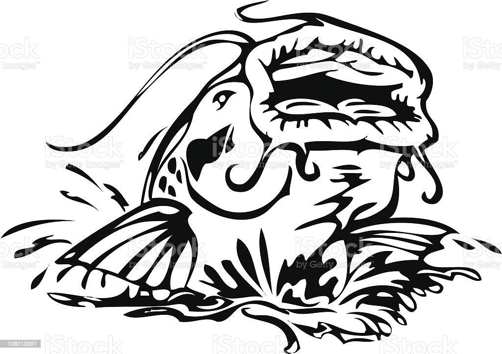 catfish illustration vector art illustration