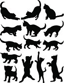 Others Cats silhouette