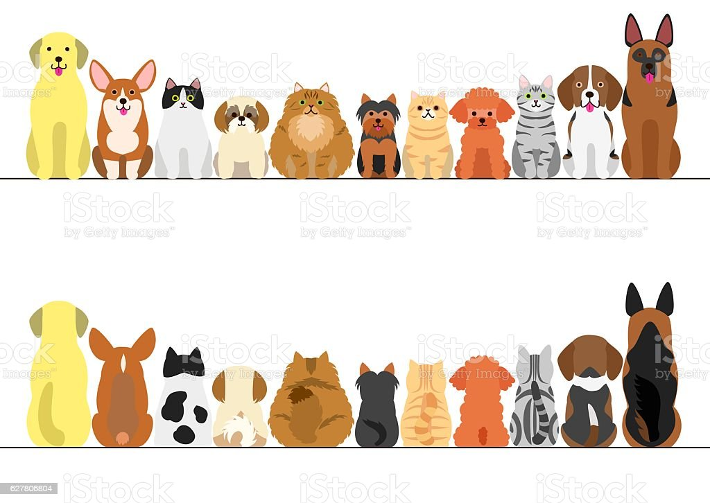 cats and dogs border set, front view and rear view ベクターアートイラスト