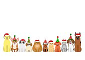 cats and dogs border set with christmas party hat.