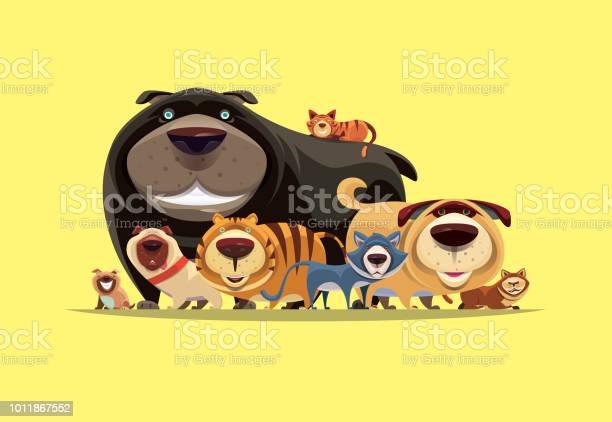 Cats and dogs gathering vector id1011867552?b=1&k=6&m=1011867552&s=612x612&h=b bl07m raqhiyhblfrm7t9z6swqxkh7ehvxk82zdtg=