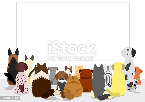 istock cats and dogs group looking at blank board, rear view 635828262