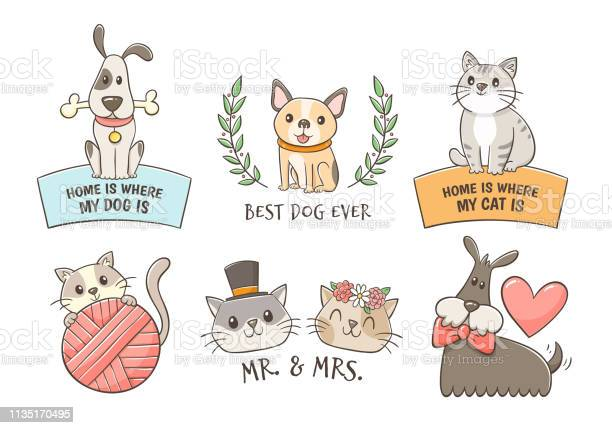 Cats and dogs label collection vector id1135170495?b=1&k=6&m=1135170495&s=612x612&h=zgketjvsthkwsyffjwjm7jqiznwefjxuexycexvsg88=