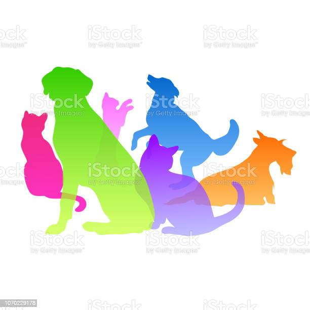 Cats and dogs personality vector id1070229178?b=1&k=6&m=1070229178&s=612x612&h=y5q yjjxtynm9z3iv3vic4bell0sf4j7taksmomqeay=