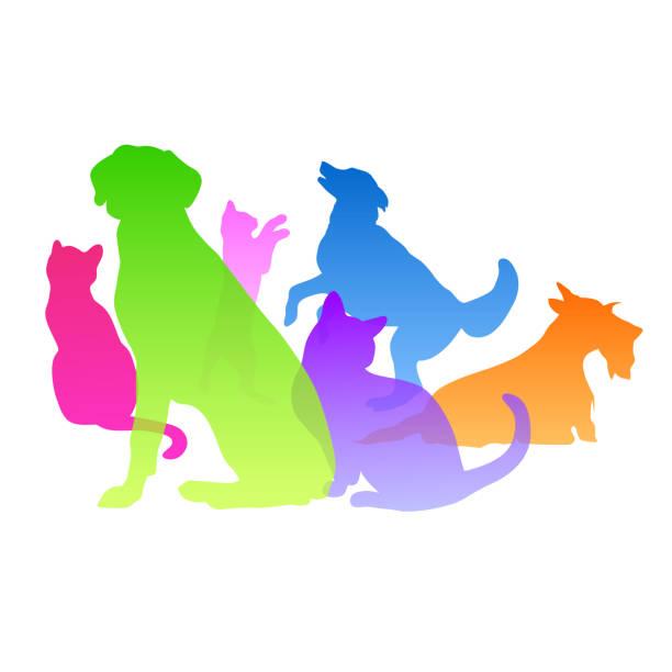 bildbanksillustrationer, clip art samt tecknat material och ikoner med katter och hundar personlighet - djursjukhus
