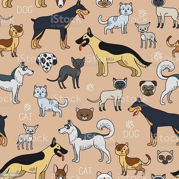 Cats and dogs seamless pattern vector id586720014?b=1&k=6&m=586720014&s=612x612&h=7ytevpixdy7mk18ny9rvxu1pkeum1mfmagsodaiex o=