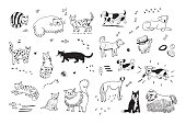 cats and dogs animals vector set
