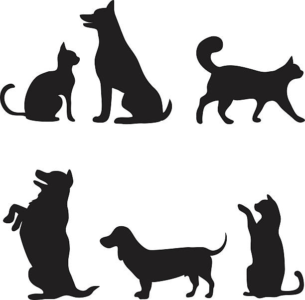 cats and dogs set - cat stock illustrations, clip art, cartoons, & icons