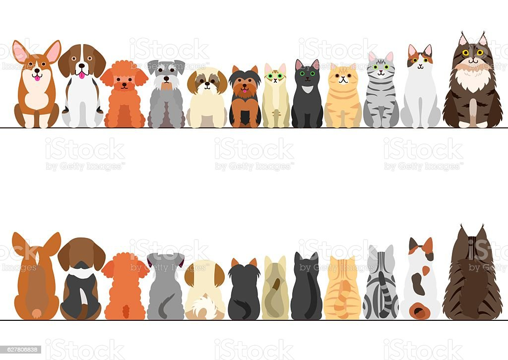 cats and small dogs border set, front view and rear view vector art illustration