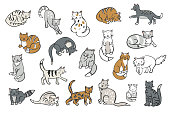 cats animals vector illustrations set