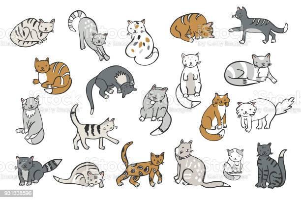 Cats animals vector illustrations set vector id931338596?b=1&k=6&m=931338596&s=612x612&h=qjo1nmzw3mybcsofdyyx9itp4wgfpzvfrv04wwuqge4=