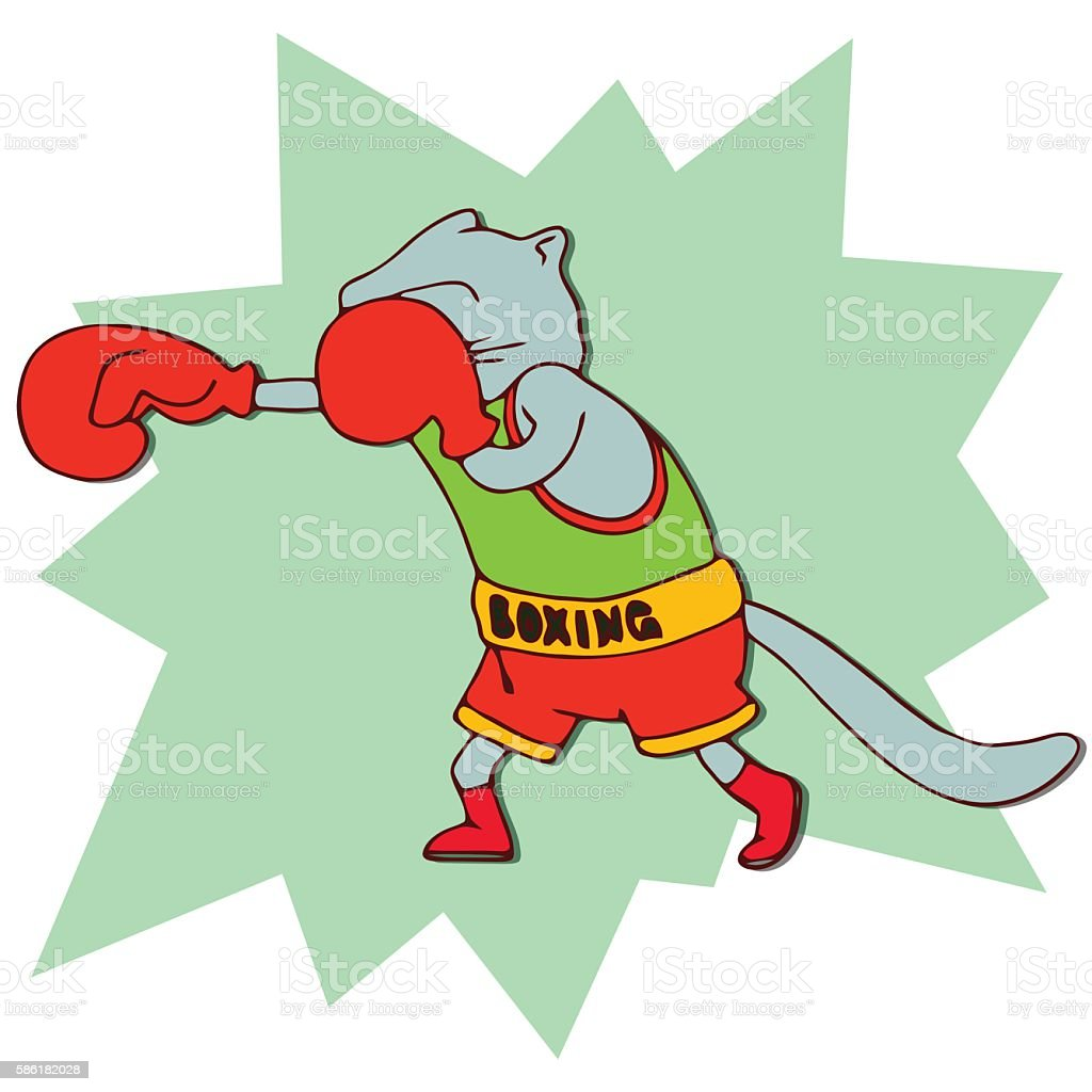 Cats athlete in sports wear. Boxer cat in red boxing gloves. Funny...