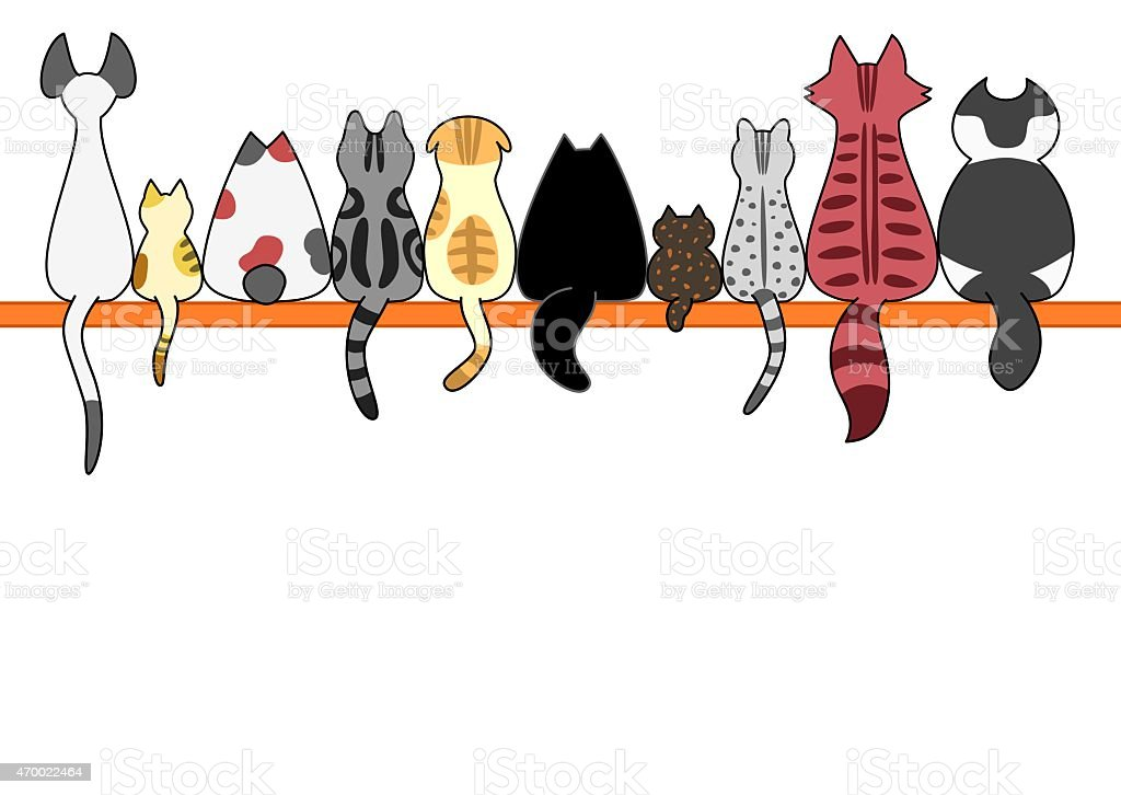 Cats back in a row with copy space vector art illustration
