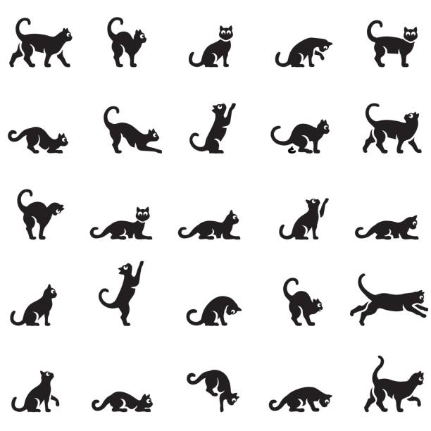 Cats body language vector art illustration