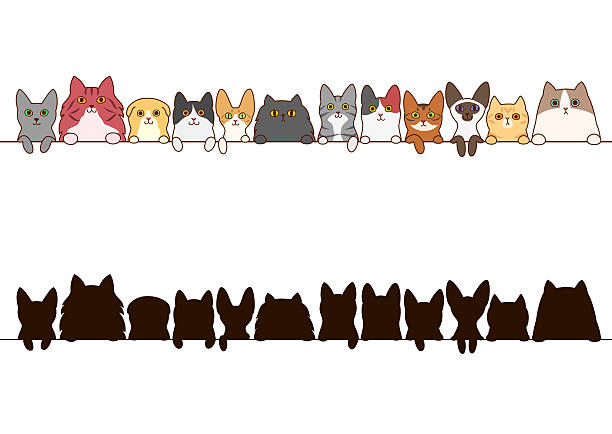 cats border set with silhouette ベクターアートイラスト