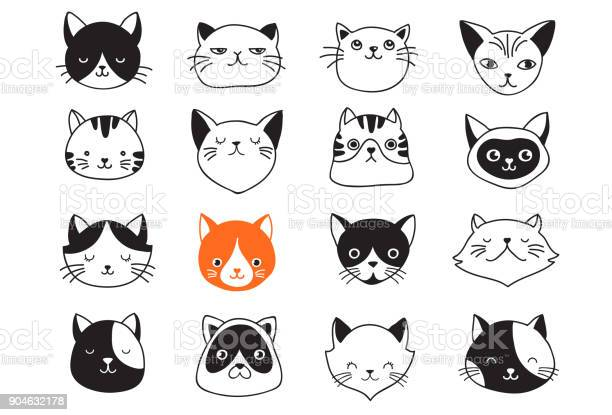 Cats collection of vector icons hand drawn illustrations vector id904632178?b=1&k=6&m=904632178&s=612x612&h=hafvicossoogwxrja2t3txewcffeodrqtuq2rq2rq7e=
