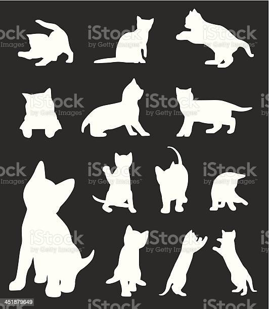 Cats collection vector id451879649?b=1&k=6&m=451879649&s=612x612&h=haflhmghtod4nrek6 9o h534tc2rhkd9famrqtjuhg=