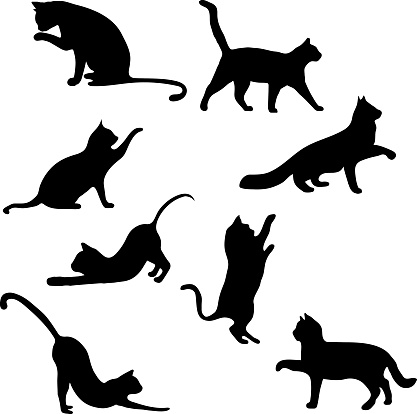 Cats collection - vector silhouette