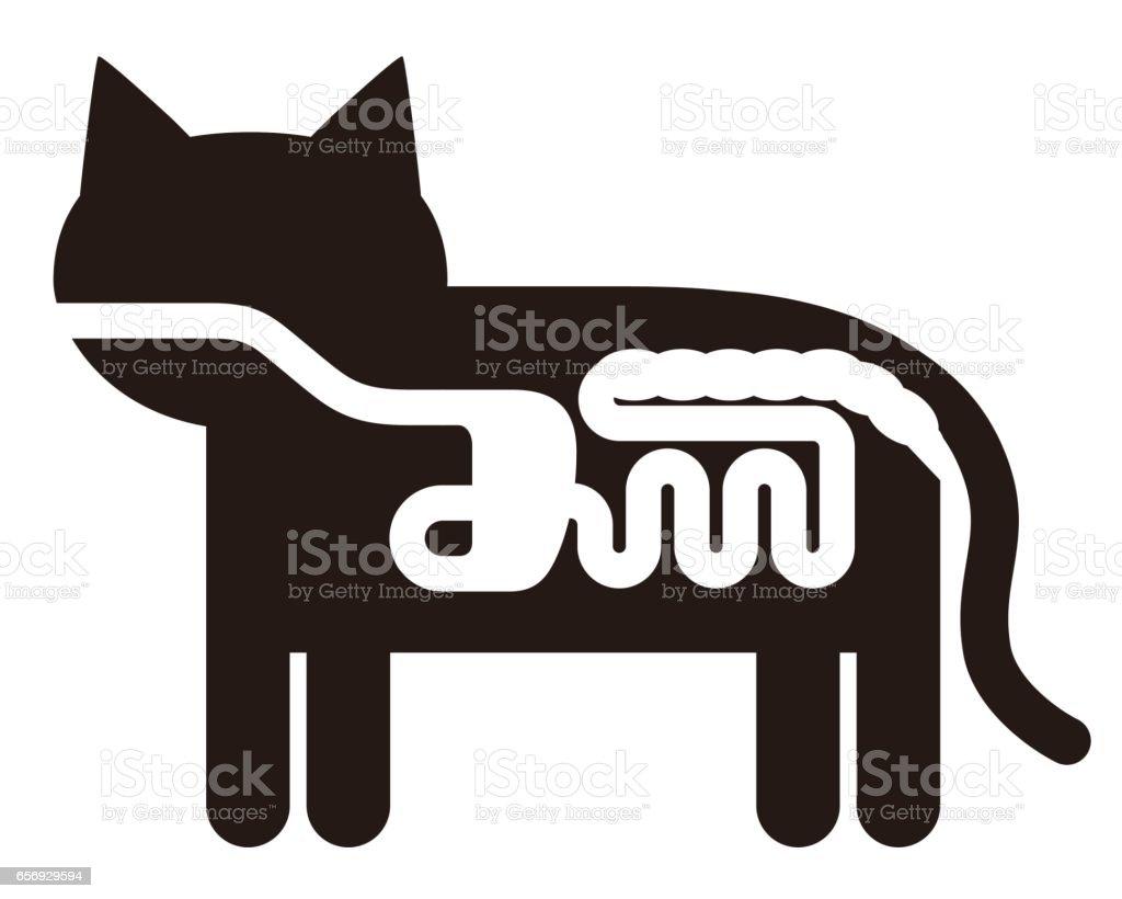 Ilustración de Pictograma De Anatomía De órgano Digestivo Del Gato ...