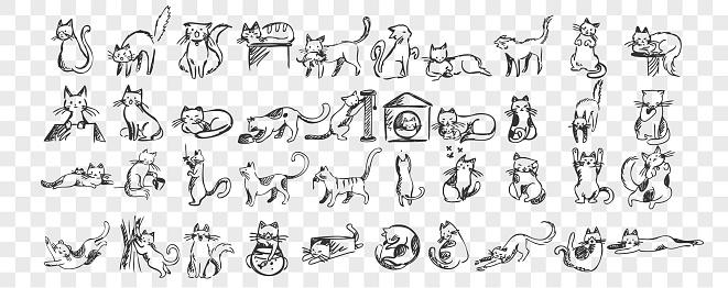 Cats doodle set