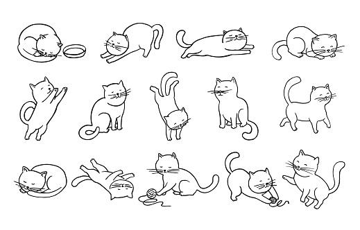 Cats Doodles Set