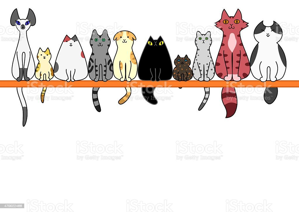 Cats front in a row with copy space vector art illustration
