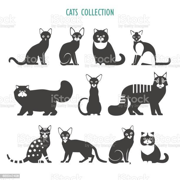 Cats icons collection vector id655342408?b=1&k=6&m=655342408&s=612x612&h=cffjhd4svlsp302aqlhddof7ozlsnrounffk5604csg=