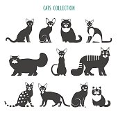 Cats icons collection