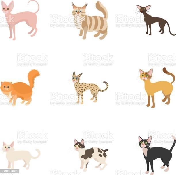 Cats icons set cartoon style vector id688604520?b=1&k=6&m=688604520&s=612x612&h=l2yfsxnbxrxzapddkkemm2ogrrmwiqdojwgoab 0ez4=