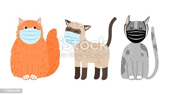 istock Cats in protective masks 1226944591