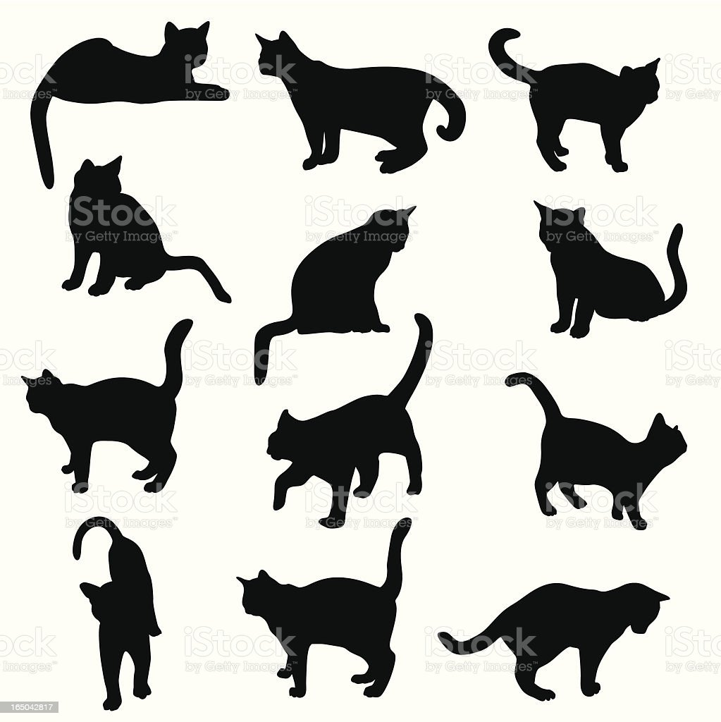 Cats Kittens Felines Vector Silhouette royalty-free stock vector art