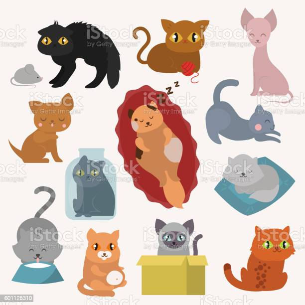 Cats kitty vector characters vector id601128310?b=1&k=6&m=601128310&s=612x612&h=dlffclccciuqs 4of8 5ujy y6kgeypldiqhz61uvna=
