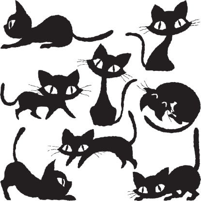 Cats of various