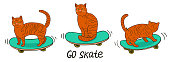 Cats on skateboards isolated on a white background. Vector graphics.