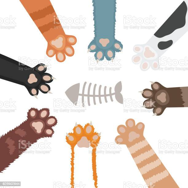Cats paw set cartoon vector illustration vector id625902644?b=1&k=6&m=625902644&s=612x612&h=xfyy8uvhxpojnvzx0tqaqvku6vre0elfgoymvrtcdv4=
