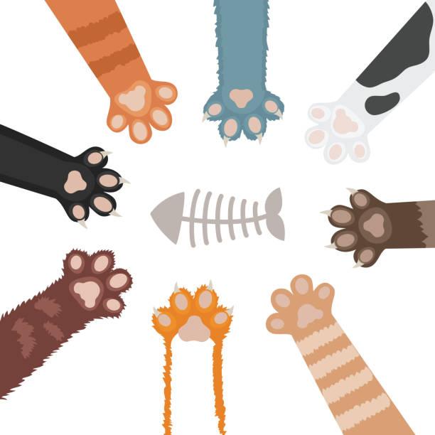 cats paw set cartoon vector illustration - pelzmäntel stock-grafiken, -clipart, -cartoons und -symbole
