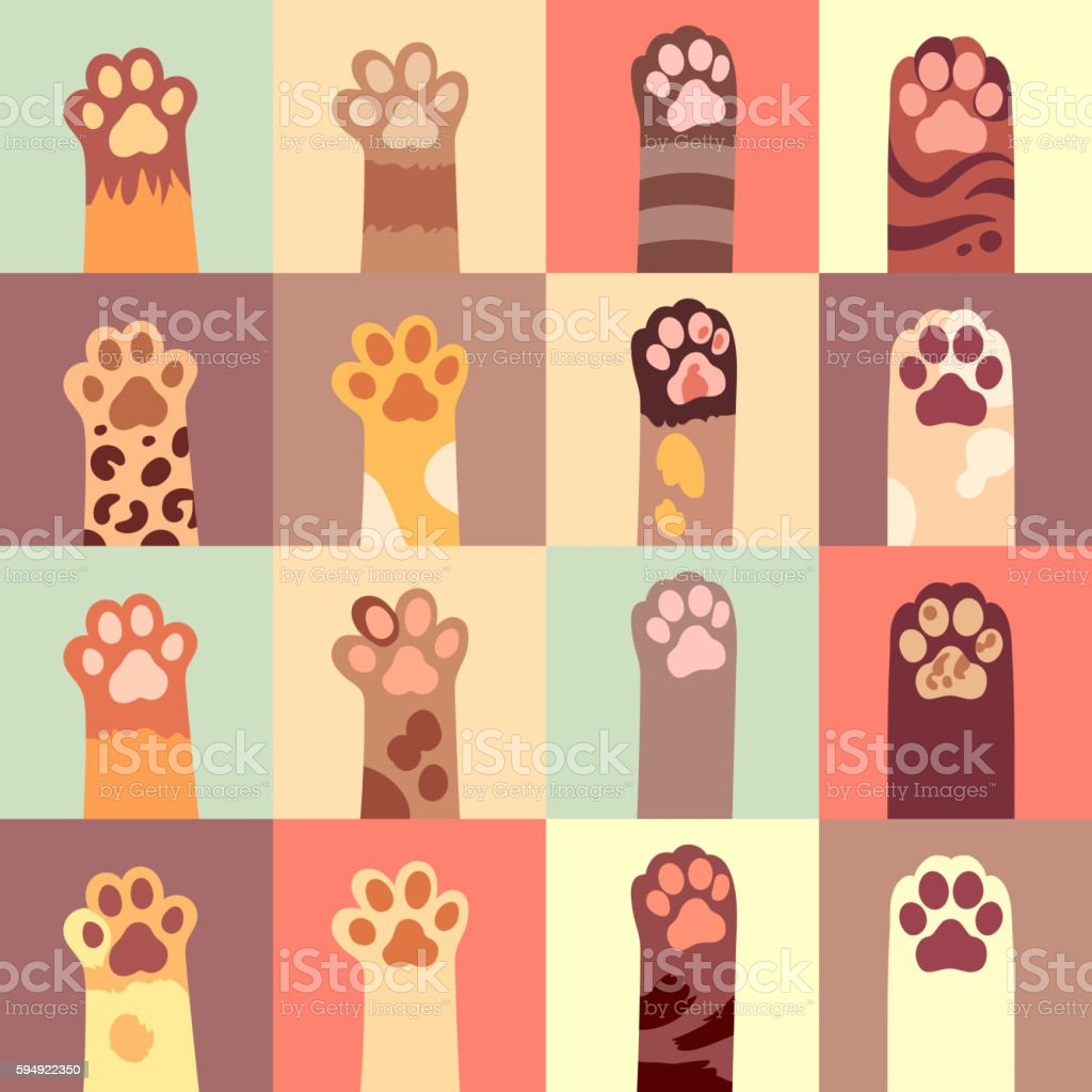 Cats paw vector flat icon set vector art illustration