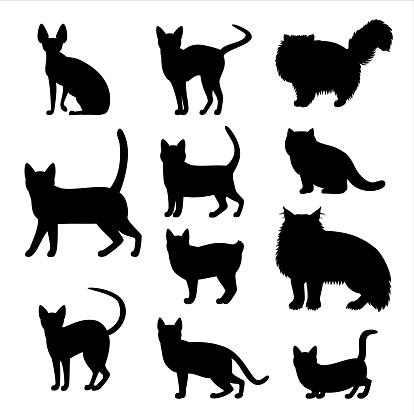 cats silhouette set