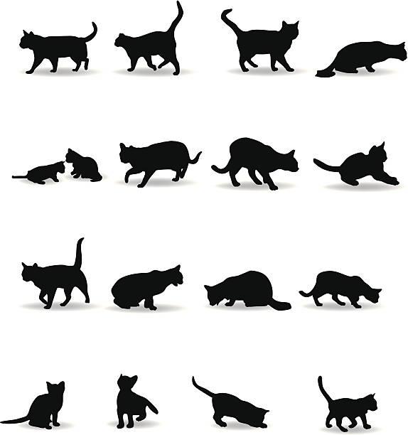 猫のシルエット - 子猫点のイラスト素材/クリップアート素材/マンガ素材/アイコン素材