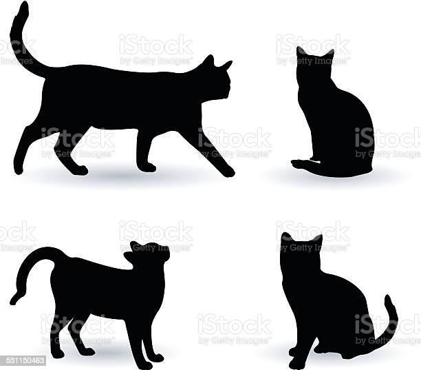 Cats silhouette vector id531150463?b=1&k=6&m=531150463&s=612x612&h=oklrgnjlqboqmybgvydebbqqx3ei qjwm5bhicpv2 a=