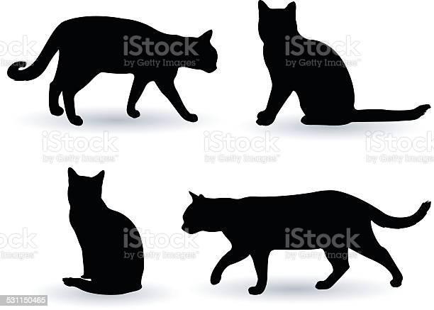 Cats silhouette vector id531150465?b=1&k=6&m=531150465&s=612x612&h=vle8um6rkqekkbbxsoyv1n64kz21oc6qhvrxqy97af8=